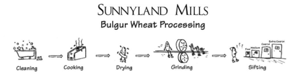 Bulgur Wheat Processing